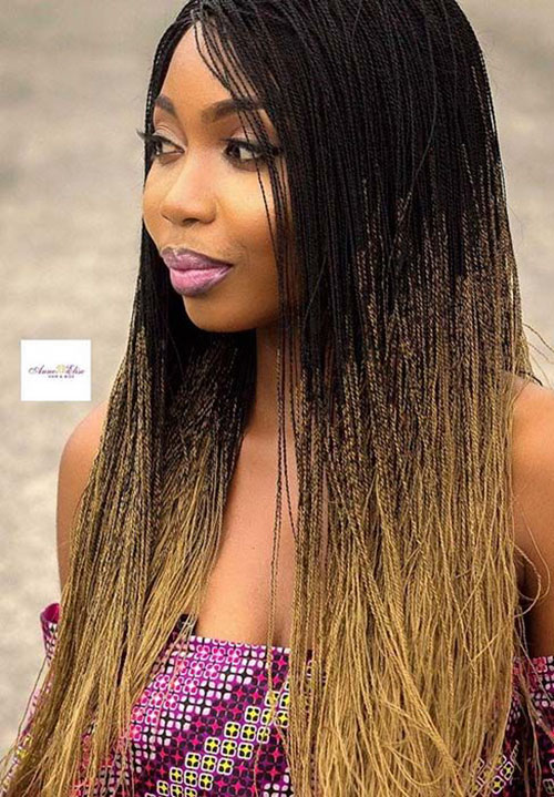 Pictures Of Micro Braids Hairstyles