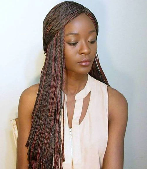 Micro Braids Hair Styles