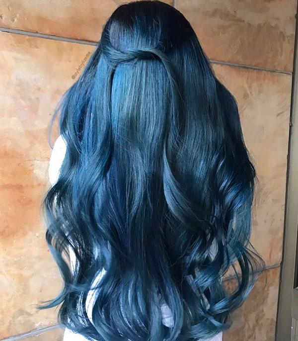 Great Blue Long Hair Pics